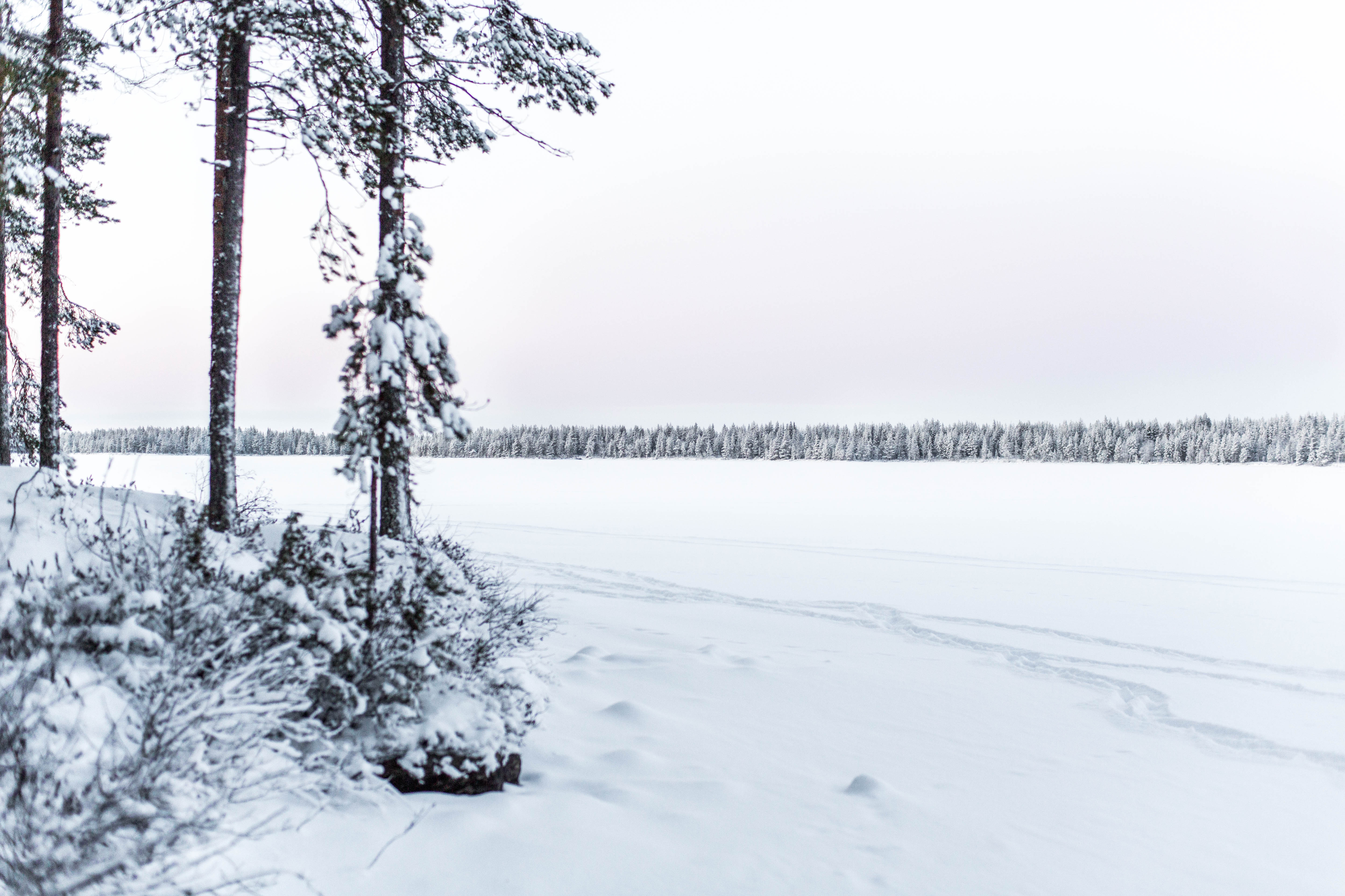 christmas_time_lapland-12-of-20